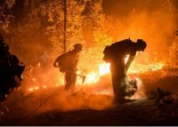 Fire crews working the 416 Fire late on the night of June 1, 2018.
